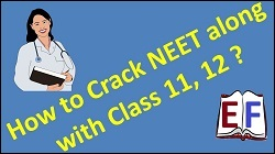 FREE CBSE Class 8 NCERT Video Lessons Online - Science, Maths, Grammar