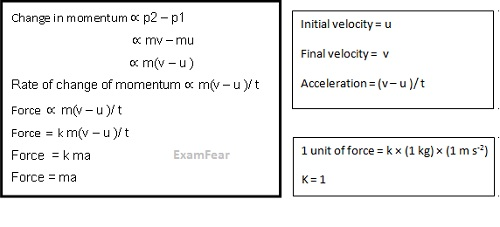 CBSE NCERT Notes Class 9 Physics Force and Laws of Motion
