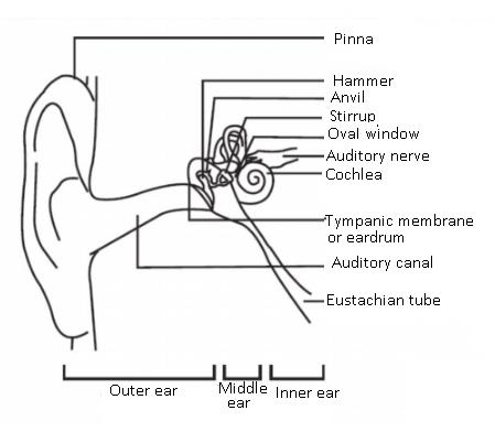 What Is Sound In Physics