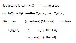 Class_12_Chemistry_Alcohols_Phenols_&_Ethers_Preparation_Of_Alcohols_By_Fermentation