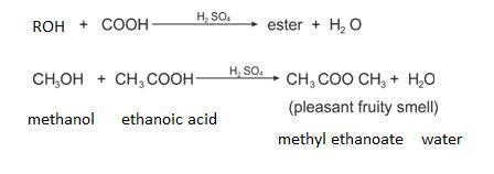 Class_12_Chemistry_Alcohols_Phenols_&_Ethers_Chemical_Properties_5