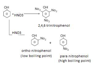 Class_12_Chemistry_Alcohols_Phenols_&_Ethers_Nitration_Of_Phenols