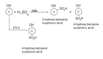 Class_12_Chemistry_Alcohols_Phenols_&_Ethers_Sulphonation_Of_Phenols