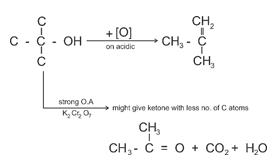 Class_12_Chemistry_Alcohols_Phenols_&_Ethers_Dehydrogenation_Of_Teritary_Alcohols